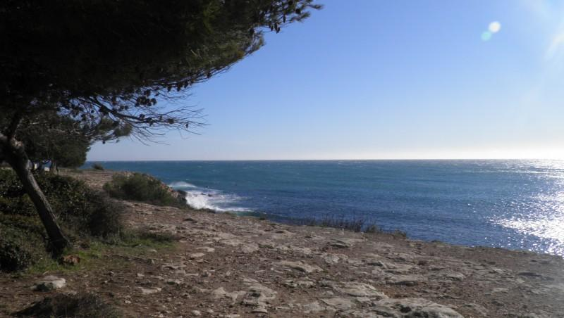 Surf report La Couronne - France (13) 2011-12-30 14:00:00