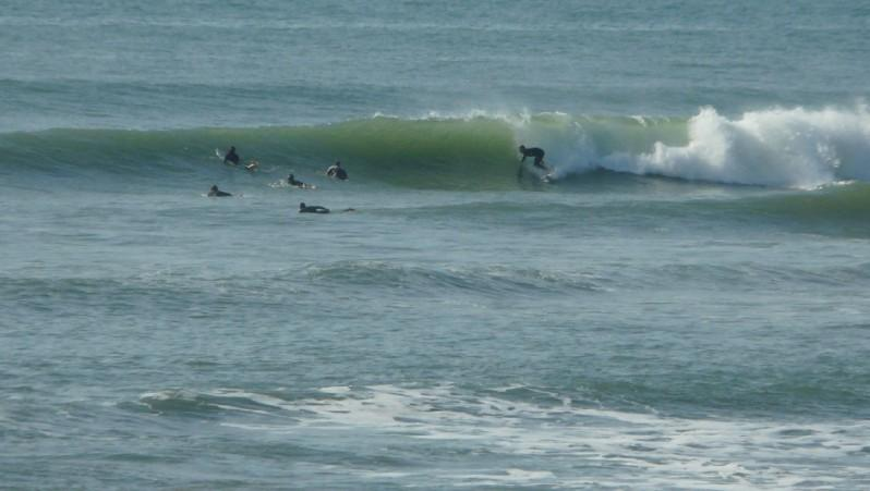 Surf report Sauveterre - France (85) 2011-10-16 12:00:00