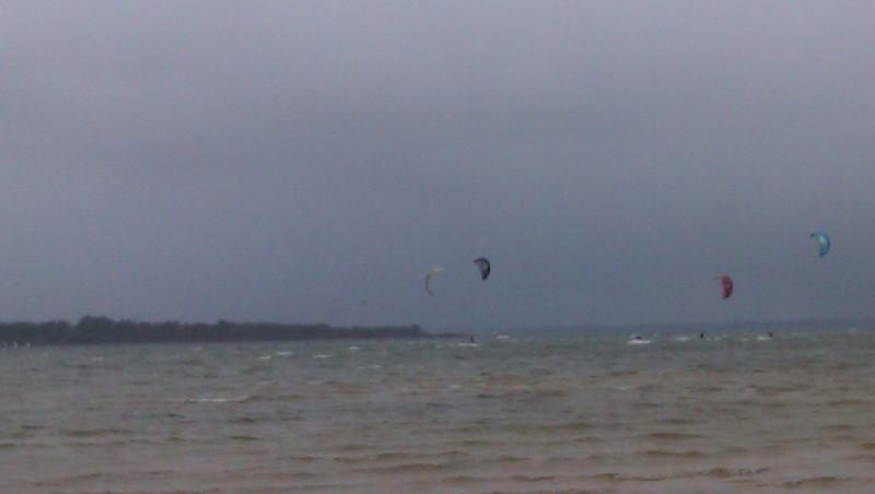 Wind report Les Aigrettes - France (40) 2011-12-04 14:00:00
