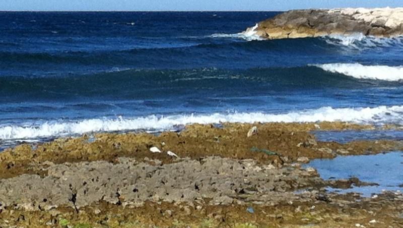 Surf report Sausset les Pins - Plage du Port - France (13) 2011-05-15 10:55:00