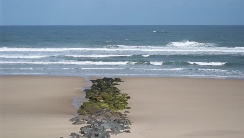 Surf report Lacanau Océan - La Nord - France (33) 2011-05-31 08:45:00