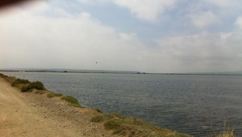 Surf report Etang de La Palme - France (11) 2011-06-27 12:16:00