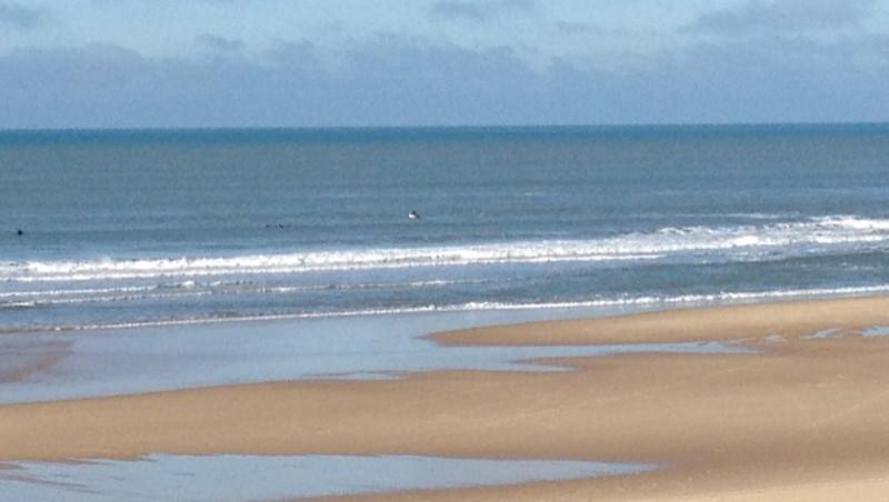Surf report Lacanau Océan - La Nord - France (33) 2012-01-10 12:00:00