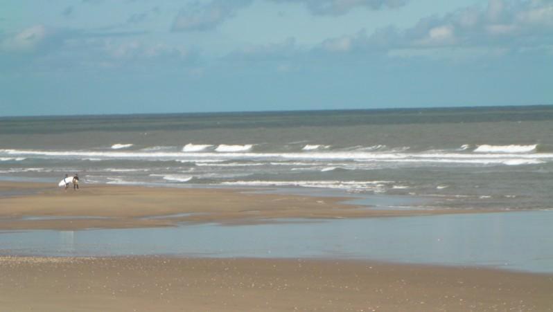 Surf report Grand Village - France (17) 2012-06-18 09:00:00