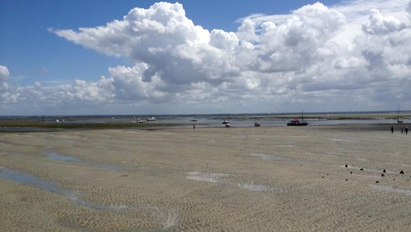 Surf report île aux Oiseaux - France (33) 2012-08-06 14:07:00