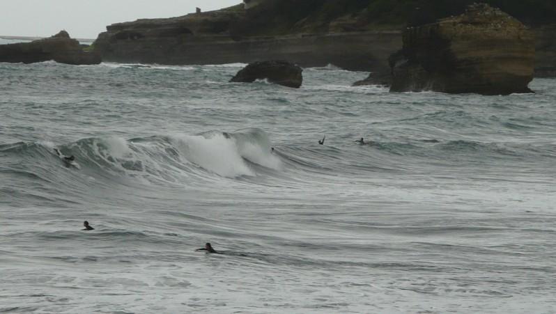 Surf report Biarritz - Grande Plage - France (64) 2012-01-22 16:00:00