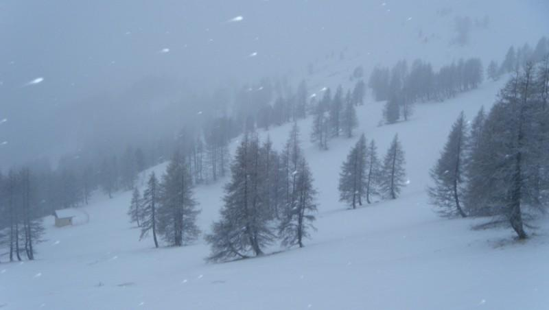 Snow report Pra Loup - France (04) 2012-01-28 11:00:00