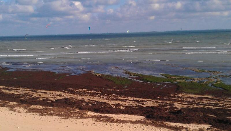 Wind report Les Gouillauds - France (17) 2012-06-12 17:00:00