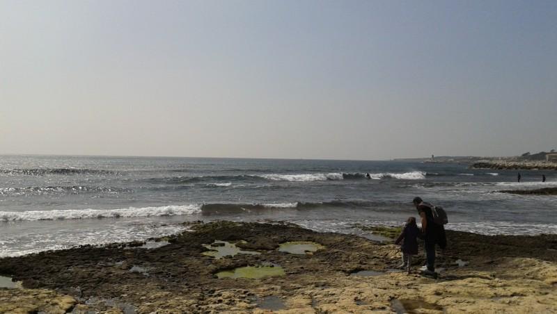 Surf report Sausset les Pins - Plage du Port - France (13) 2013-04-07 14:00:00