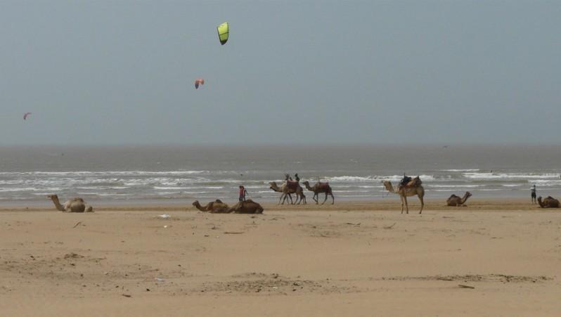 Surf report Essaouira - Maroc (MA) 2013-04-20 14:00:00