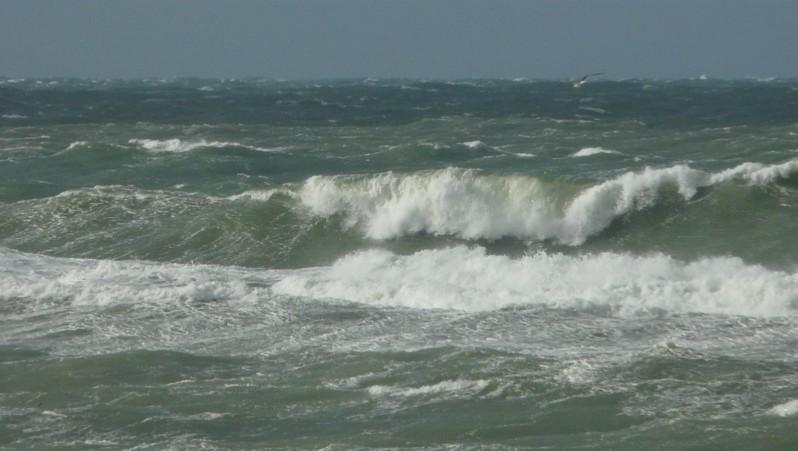 Surf report Mimizan - Plage Garluche - France (40) 2013-11-21 13:00:00