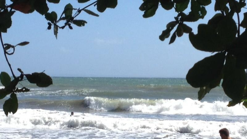 Surf report Bananier - Guadeloupe (GP) 2013-12-14 11:13:00