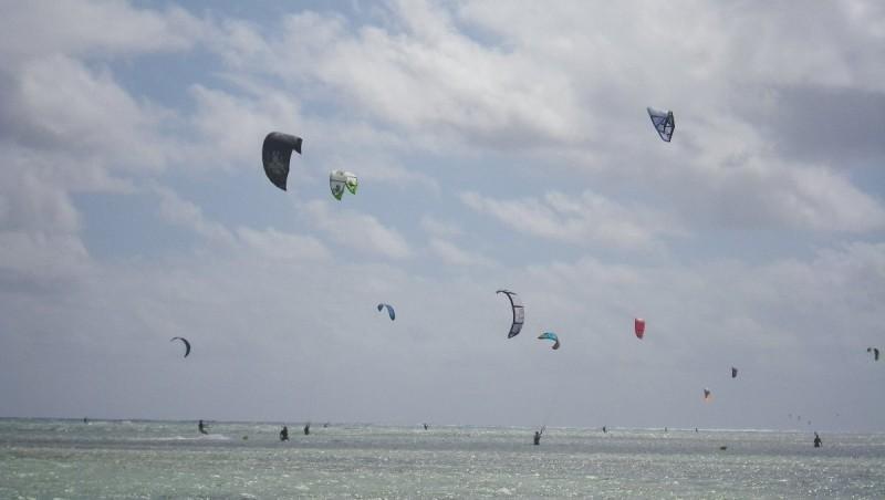 Wind report Pointe Faula - Martinique (MQ) 2013-02-02 09:00:00
