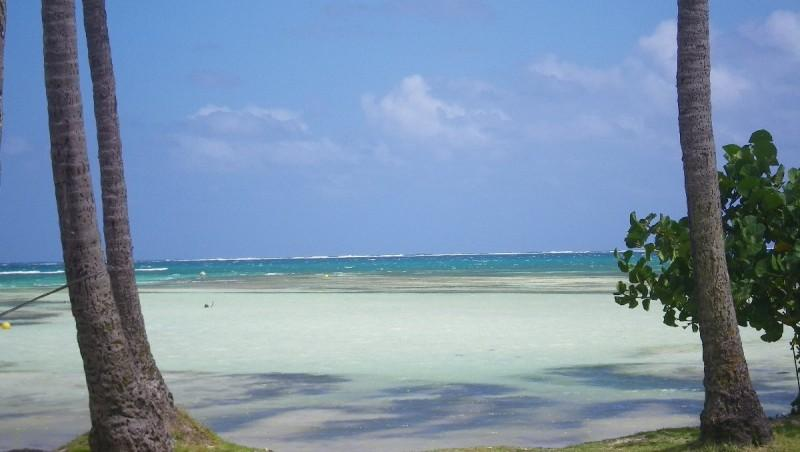 Wind report Pointe Faula - Martinique (MQ) 2013-02-03 10:00:00