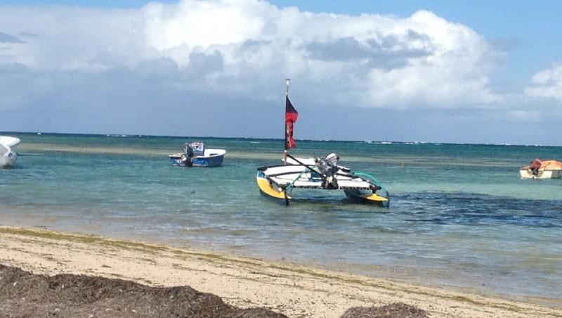 Wind report Pointe Faula - Martinique (MQ) 2013-02-05 10:00:00
