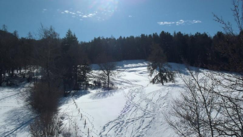 Snow report Ancelle - France (05) 2013-02-20 10:00:00