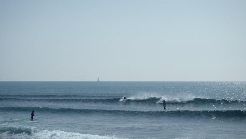 Surf report Sausset-les-Pins - L'Hermitage - France (13) 2013-03-02 13:00:00
