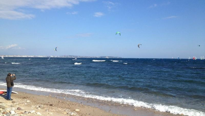 Wind report Cannes - Palm Beach - France (06) 2013-02-28 12:00:00
