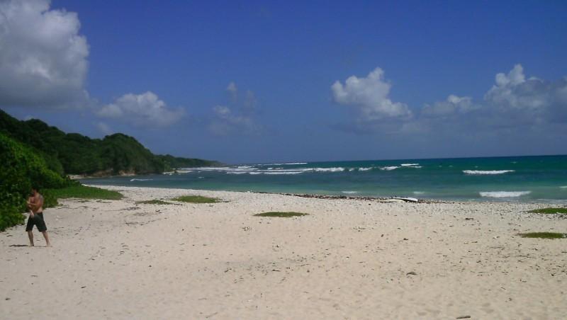 Surf report Plage du Helleux - Guadeloupe (GP) 2013-10-14 11:00:00