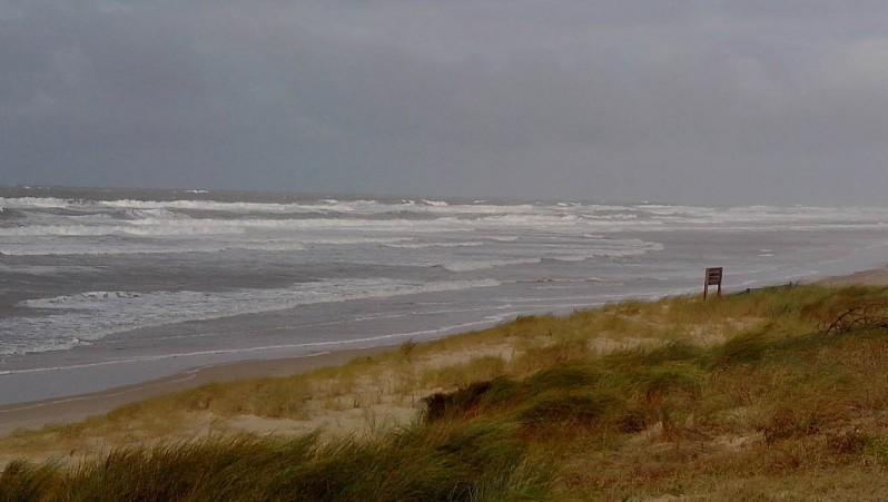 Wind report Lacanau Océan - La Nord - France (33) 2013-11-10 12:00:00