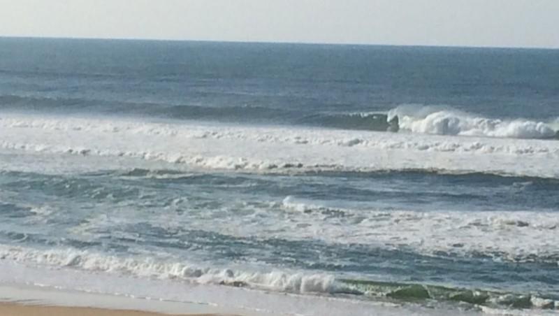 Surf report Contis Plage - France (40) 2014-11-10 13:48:00
