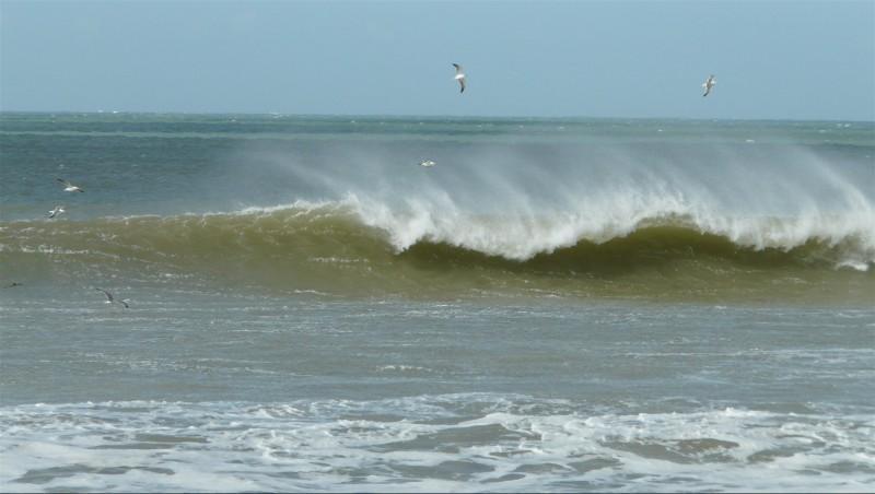 Wind report Sidi Kaouki - Marabout - Maroc (MA) 2014-01-28 12:00:00