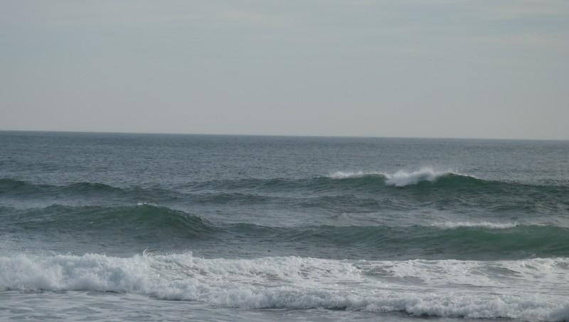 Surf report Carro - France (13) 2014-03-16 14:00:00