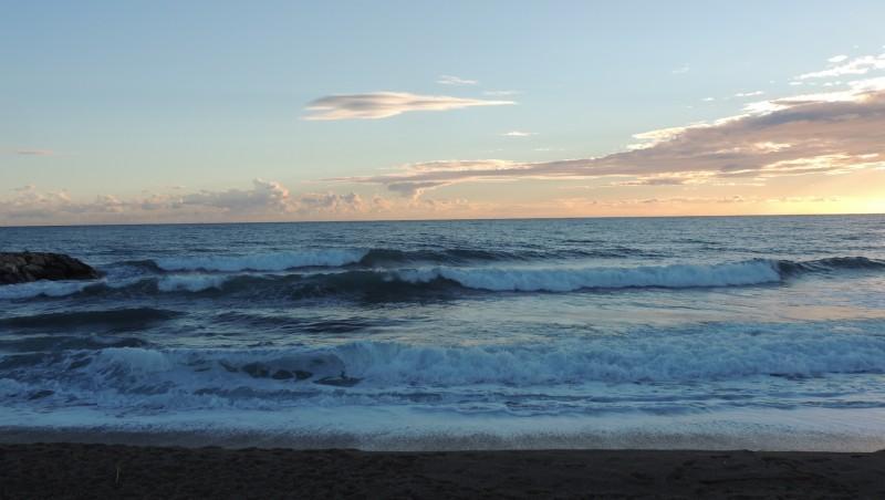 Surf report Sausset les Pins - Plage du Port - France (13) 2014-11-15 14:00:00
