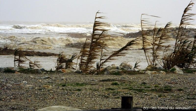 Wind report Le Barcarès - Cap Coudalère  - France (66) 2014-11-30 12:00:00