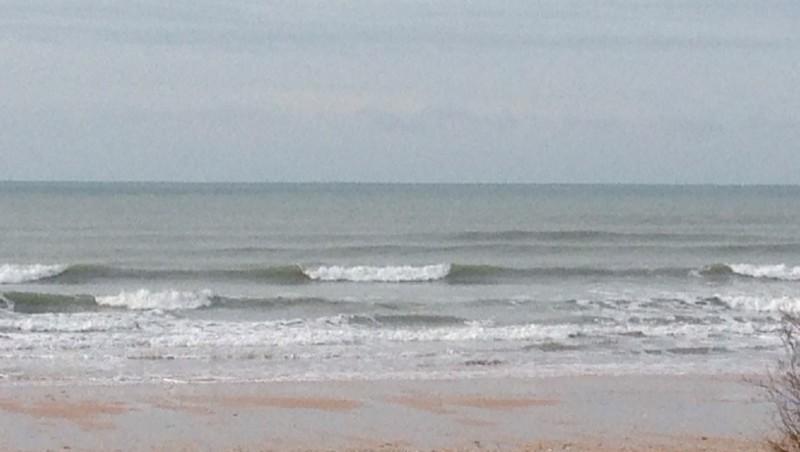 Surf report Vert Bois - France (17) 2015-01-20 13:04:00