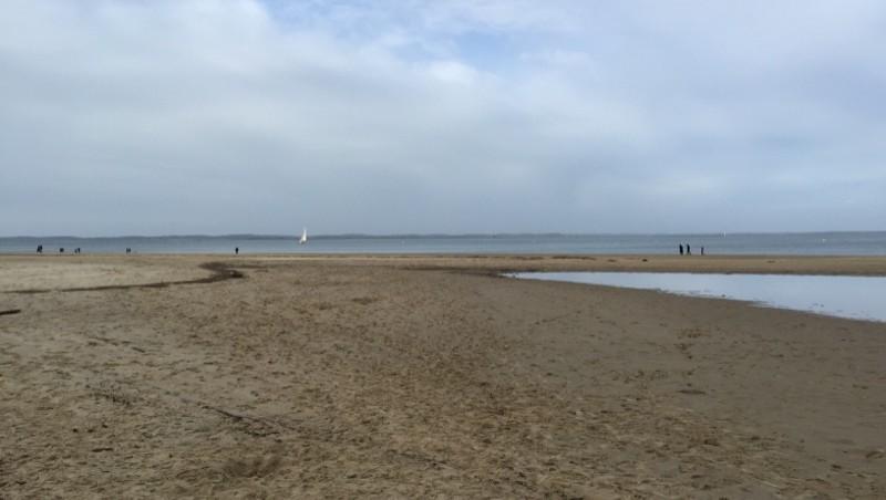 Surf report Arcachon - Plage d'Eyrac - France (33) 2015-02-22 16:32:00