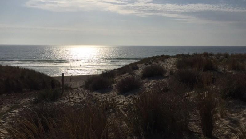 Surf report Le Porge - France (33) 2015-07-18 19:22:00
