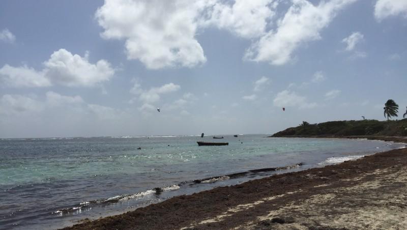 Wind report Cap Chevalier - Martinique (MQ) 2015-02-03 10:00:00