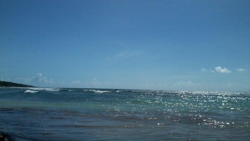 Surf report Plage du Helleux - Guadeloupe (GP) 2015-10-28 11:00:00