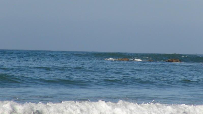 wave report Baie de Tafedna - Maroc (MA) 2015-11-21 10:00:00