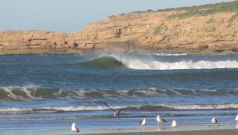 Surf report Baie de Tafedna - Maroc (MA) 2015-11-25 09:00:00