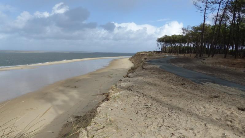 Wind report La Lagune - France (33) 2016-01-12 13:00:00
