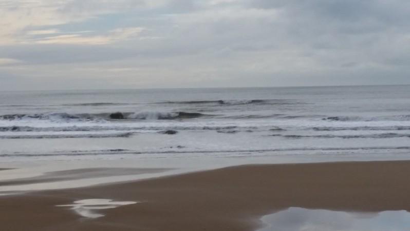 Surf report St Gilles-Croix-de-Vie - France (85) 2016-01-28 15:00:00