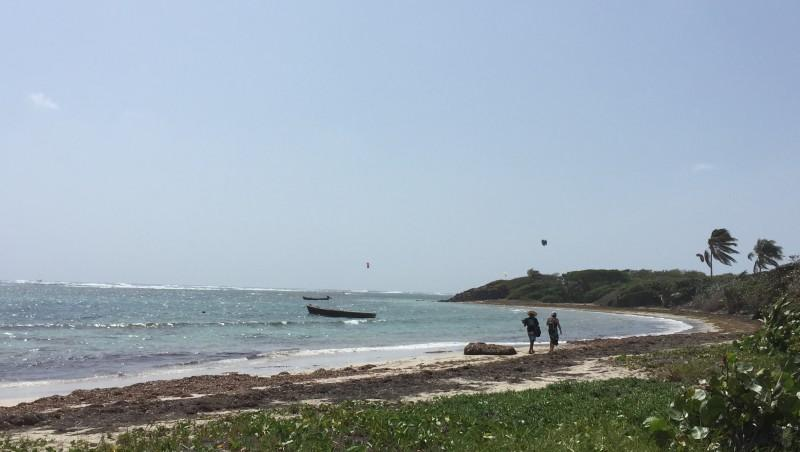 Wind report Cap Chevalier - Martinique (MQ) 2016-02-12 09:00:00