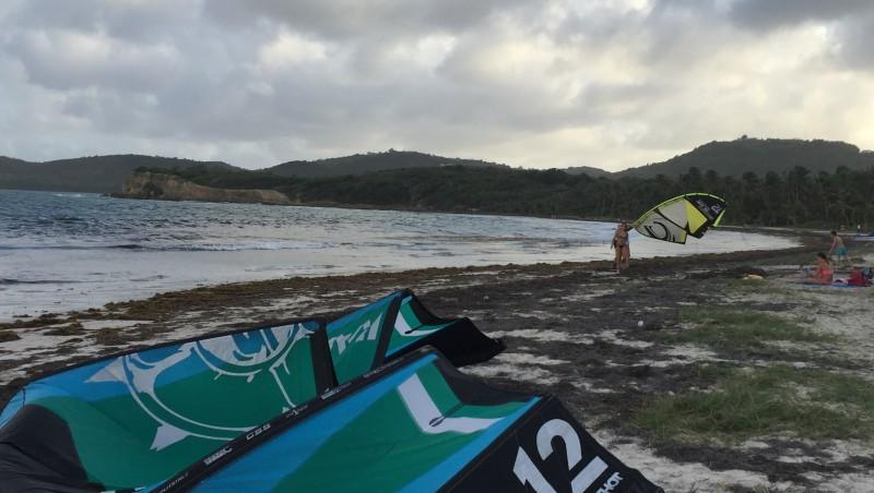 Wind report Martinique Beach - Canada (CA) 2016-02-14 16:00:00