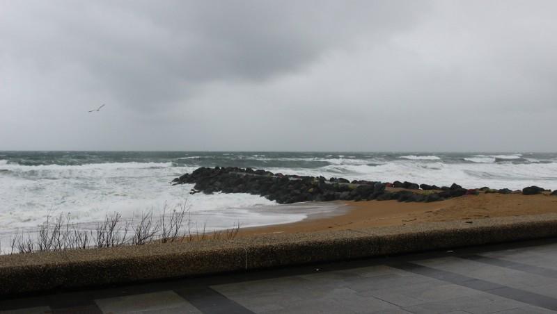 Surf report Anglet Sables d'Or - France (64) 2016-02-27 09:00:00