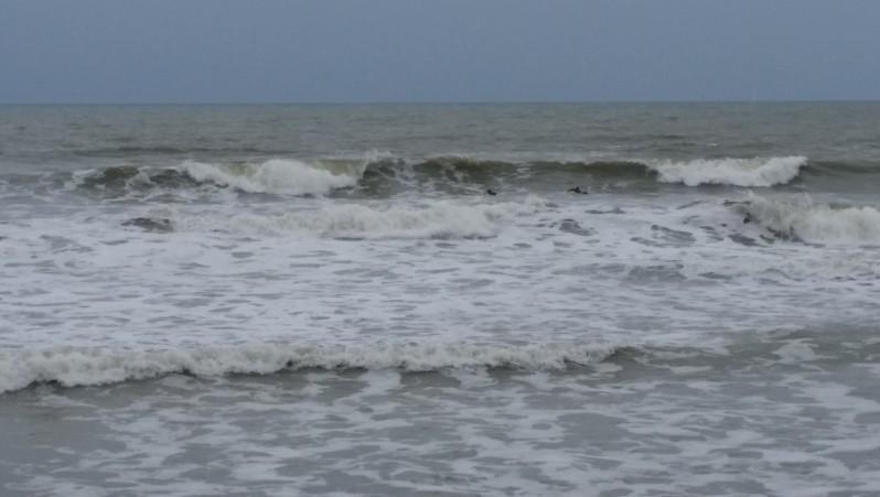Surf report St Gilles-Croix-de-Vie - France (85) 2016-04-03 16:00:00