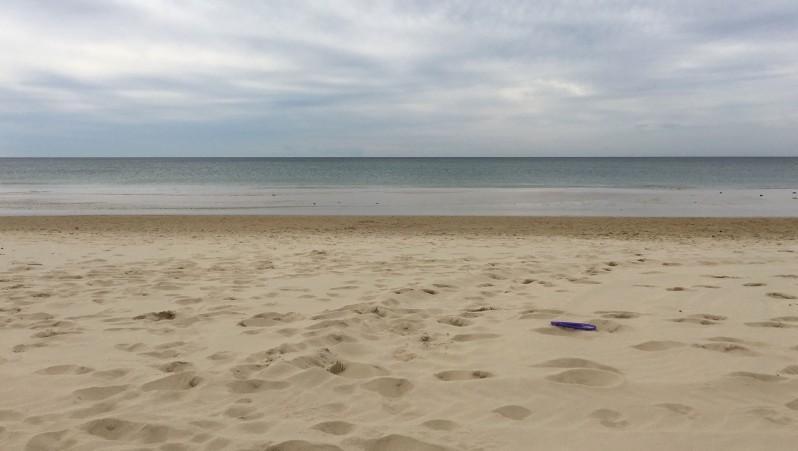 Surf report Biscarrosse Plage - France (40) 2016-04-19 16:00:00