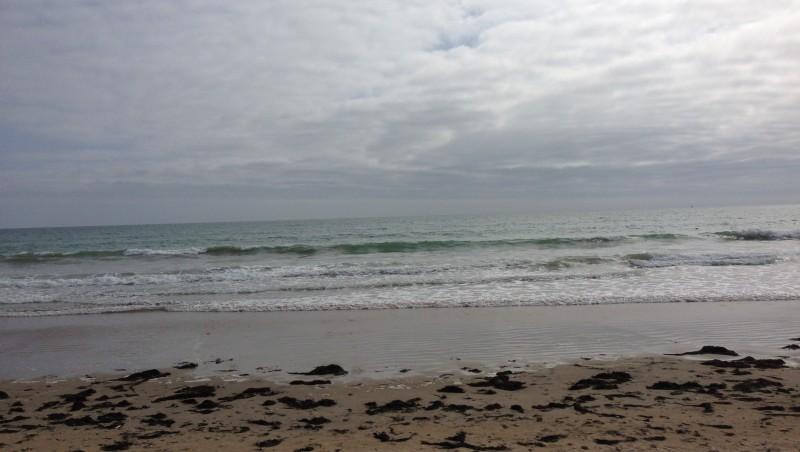 Surf report Gros Jonc - France (17) 2016-05-20 18:00:00