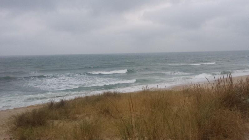 Surf report Lacanau Océan - La Nord - France (33) 2016-07-20 06:00:00