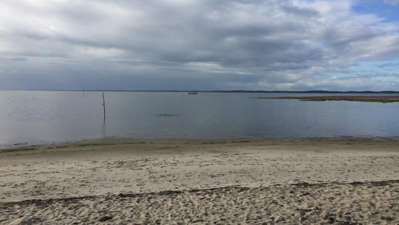 Wind report Andernos - Plage Port Ostréicole - France (33) 2016-11-08 12:00:00