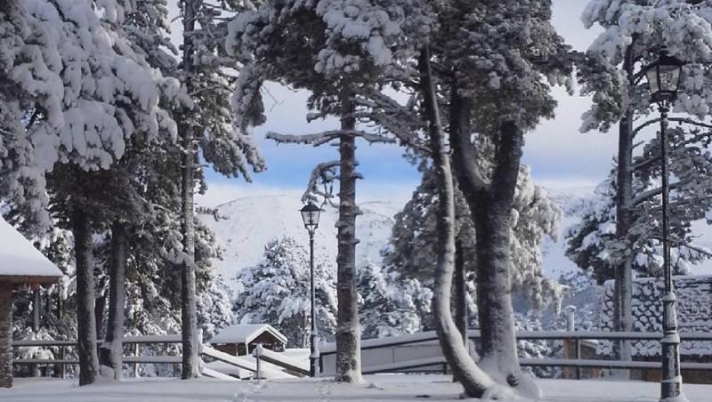 Snow report La Rabassa - Andorre (AD) 2016-11-25 15:00:00