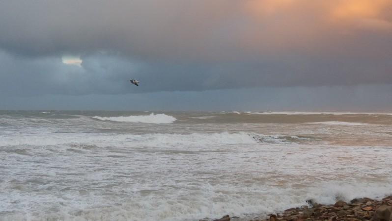 wind report Oued Merzeg - Maroc (MA) 2016-12-16 14:00:00