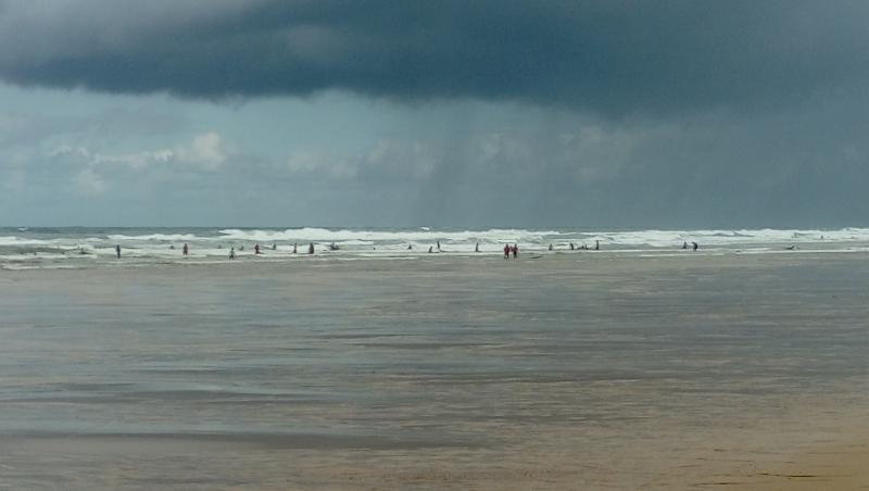 wave report Vieux Boucau - France (40) 2017-08-09 11:00:00