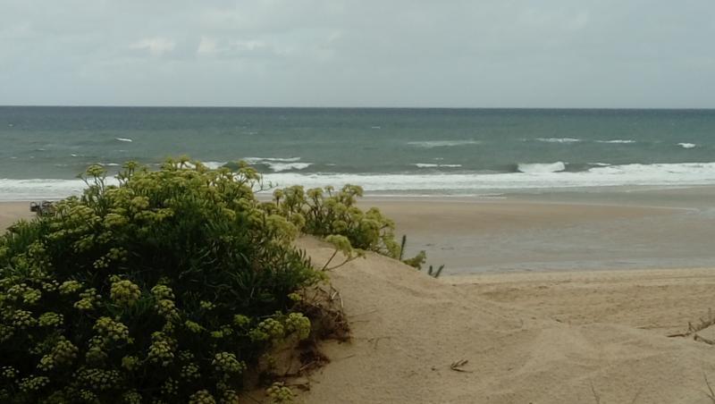 Surf report Messanges - France (40) 2017-08-09 12:00:00